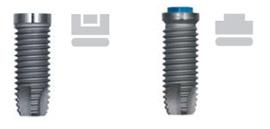 implante 3i